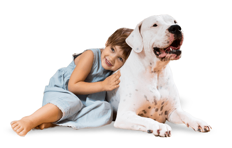 pet with girl free img