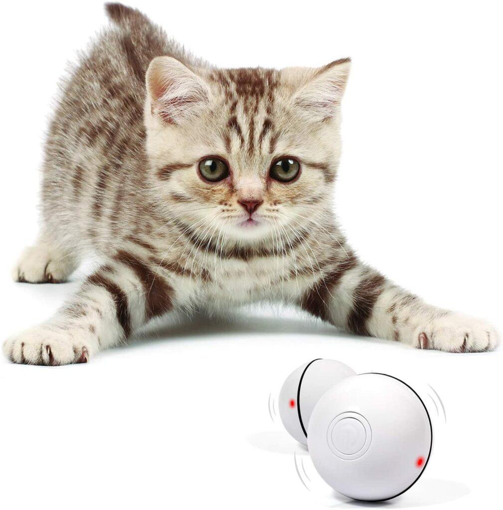 cat toy 8