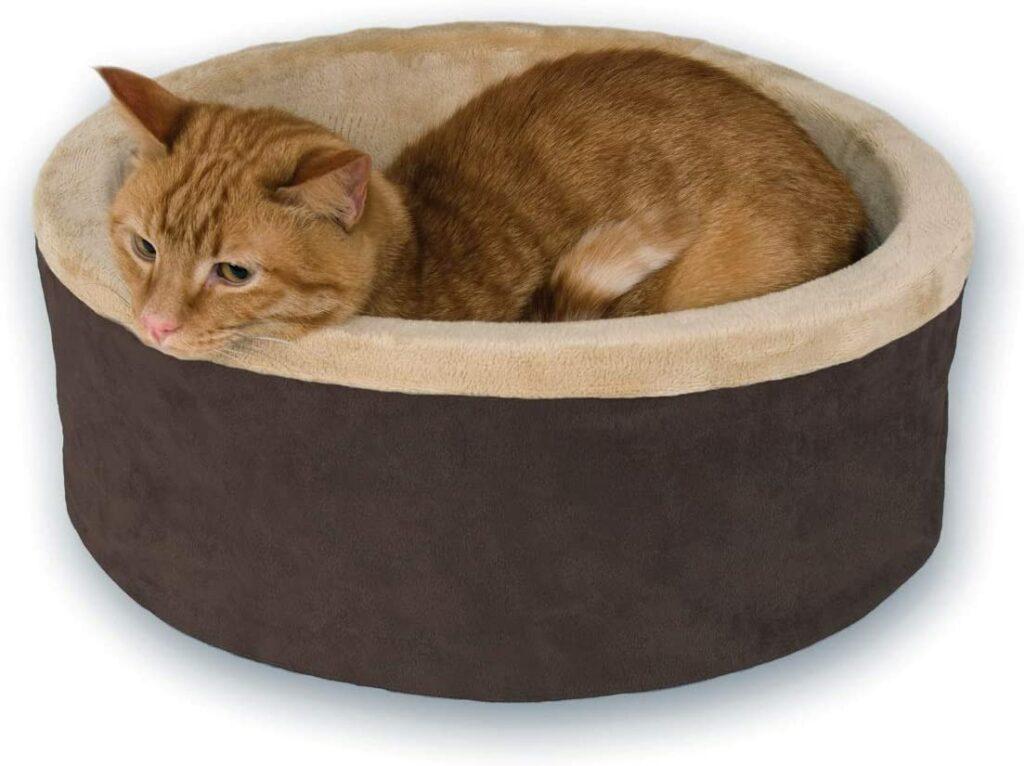 cat bed 10