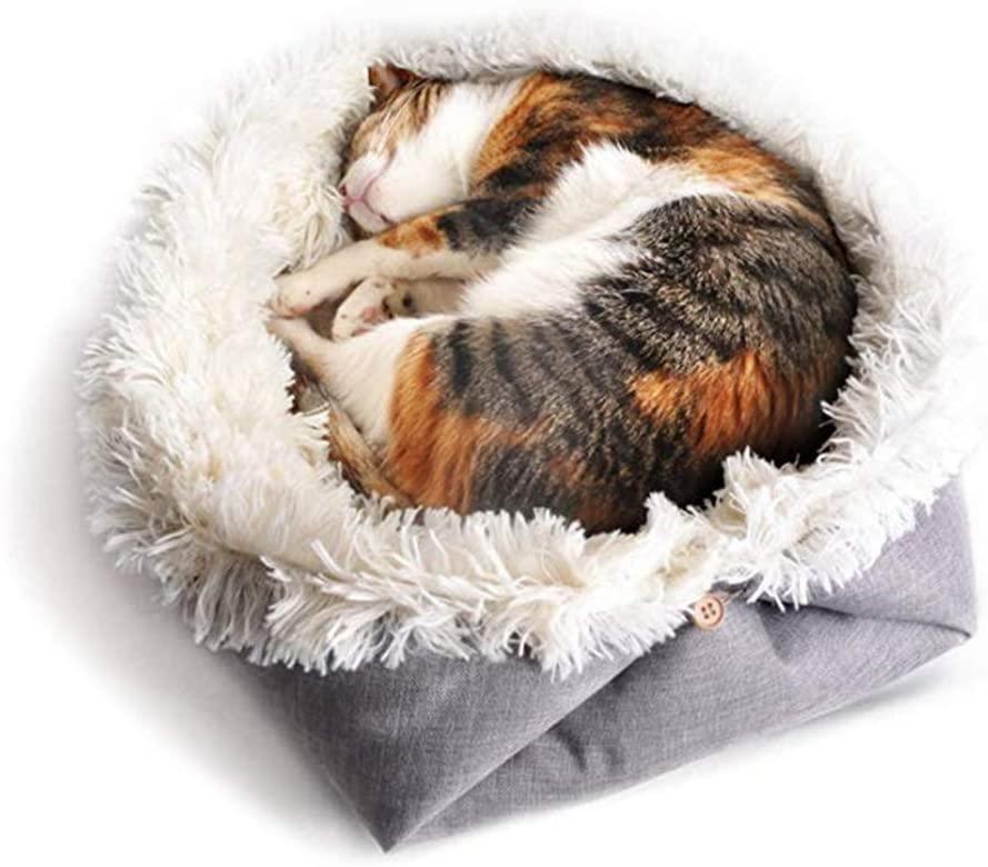 cat bed 2