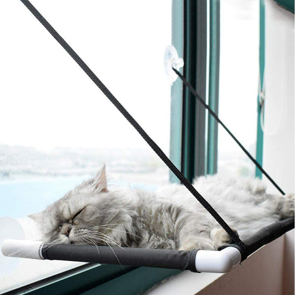 cat bed 5
