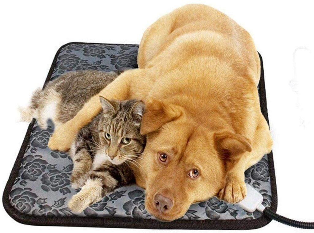 cat bed 9