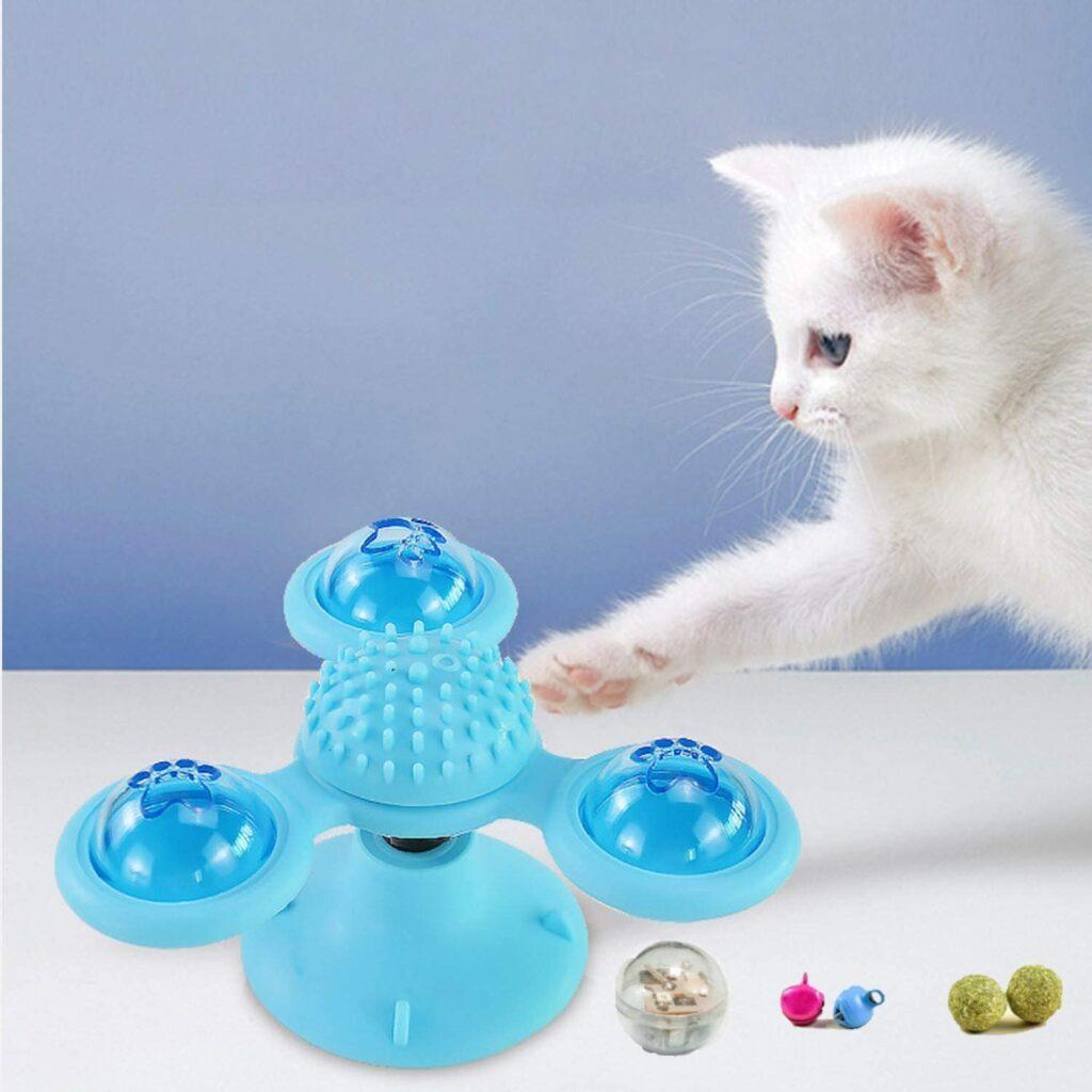 kitten toy 2